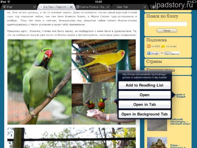 iChromy браузер на iPad