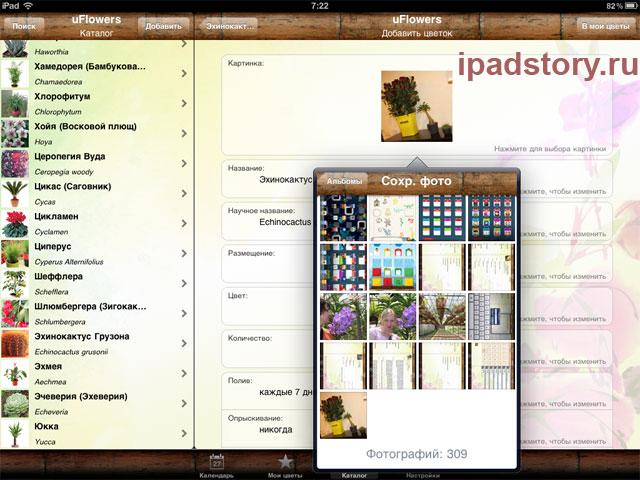 uFlowers для iPad