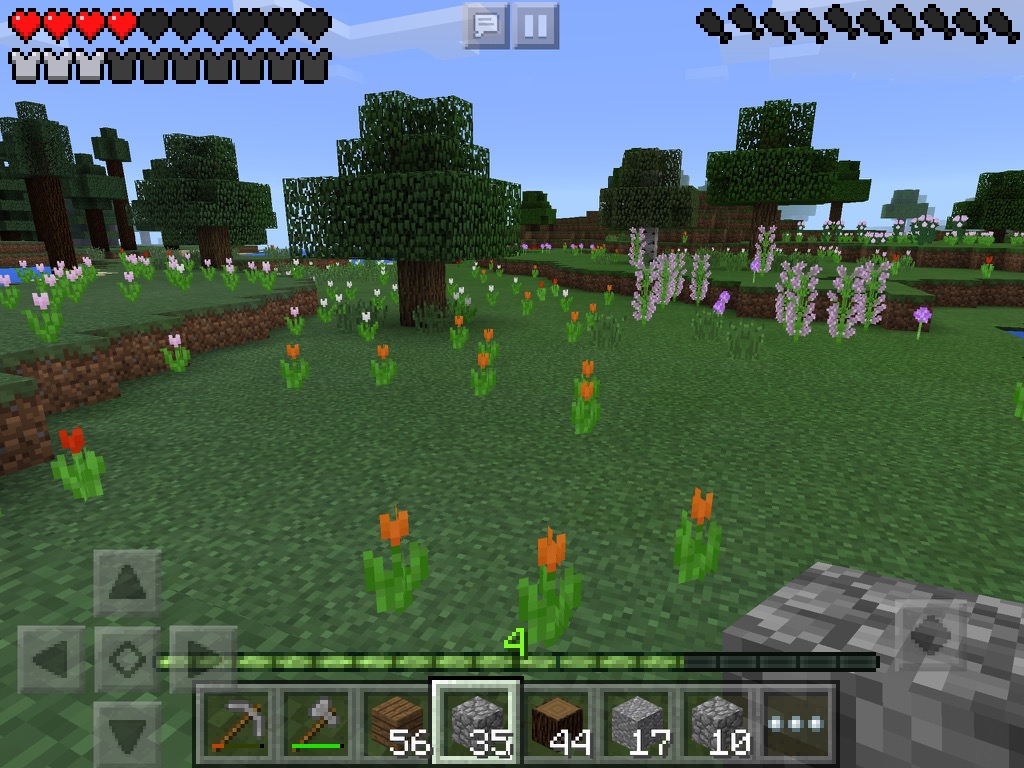 Minecraft на iPad скины