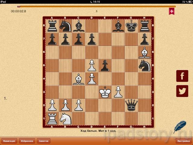 Шахматные задачи на iPad