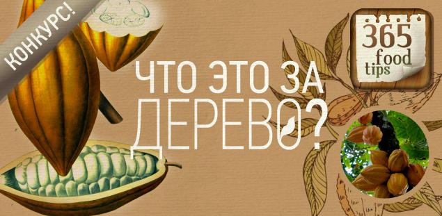 365_food