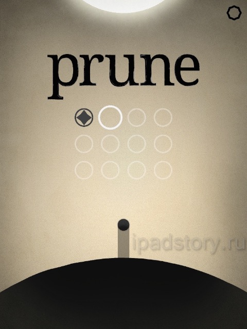 Интерфейс у Prune