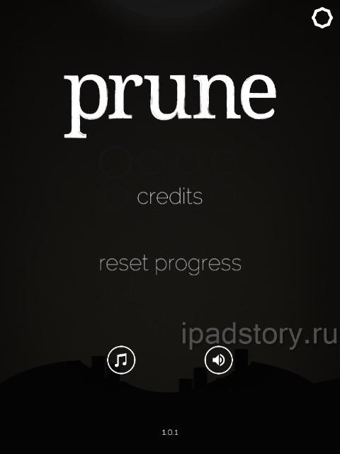 В целом, Prune – это очень удачная и самобытная игра. В неё удобно играть на планшете, управление как раз под него заточено. Интересная и шикарно реализованная идея, приятная графика, отсутствие внутреигровых покупок. Небольшой глоток свежего воздуха, как раз то, что сейчас нужно.