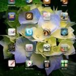 Как установить ipa файлы на iPad