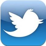 Встроенный Twitter на iPad
