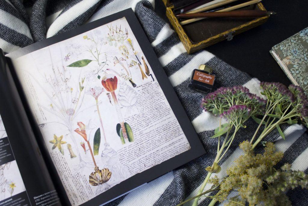 Программа по ботанике и самообразование